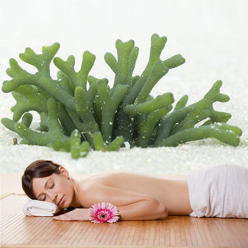 tratamiento-sensenova-algas-reductoras-detox